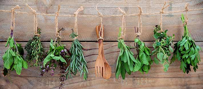 mon choix de plantes aromatiques