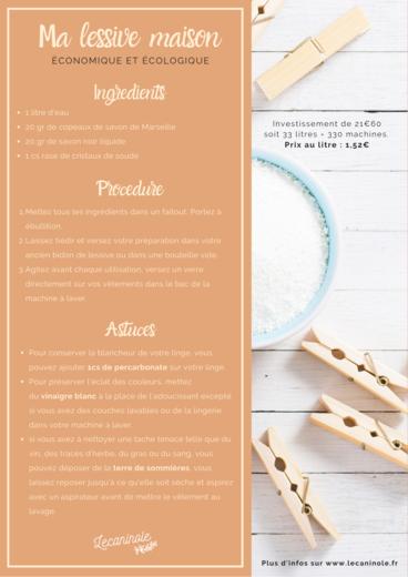 Affiche de recette de lessive maison lecaninole