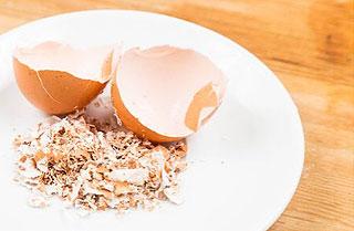 Recycler les coquilles d'oeufs en cuisine