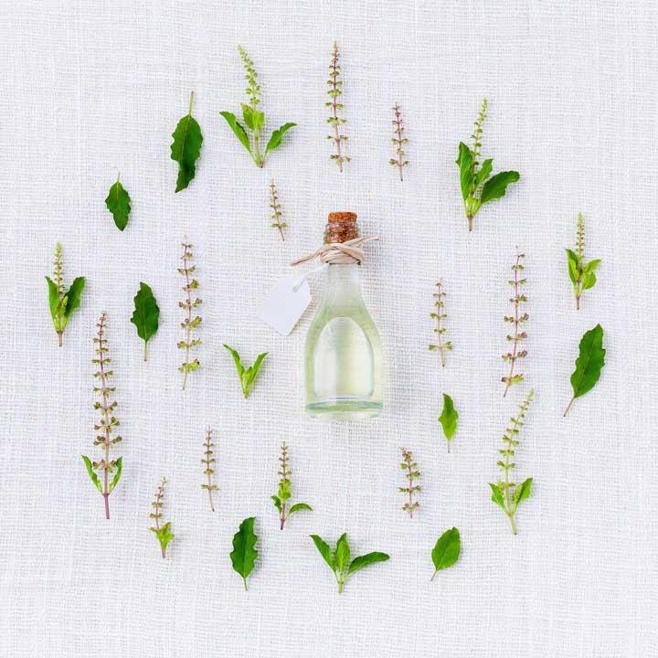 huile essentielle contre les moustiques